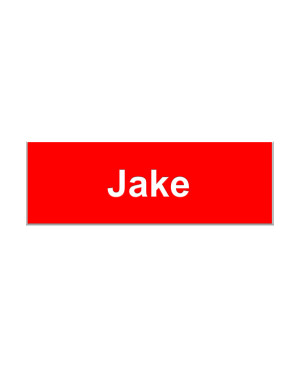 Jake From State Farm Name Badge