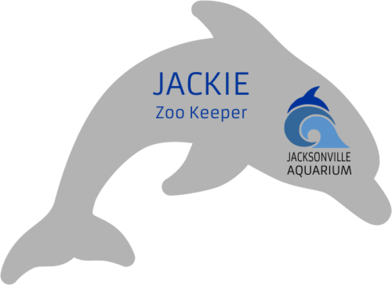 Dolphin Shaped Name Badge