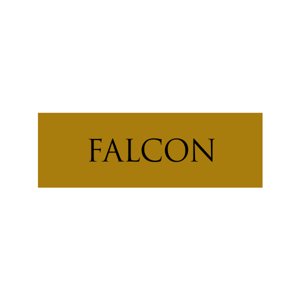 Falcon Halloween Costume Name Tag